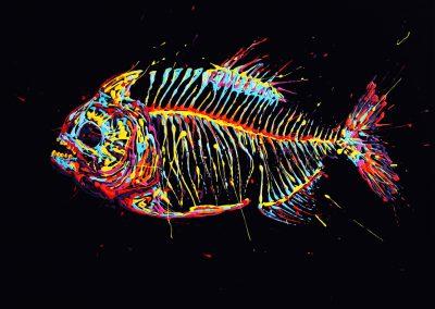 arnaudflow-fishbones-50-x-65-cm
