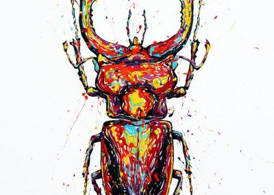arnaudflow-scarabee-100-x-50-cm