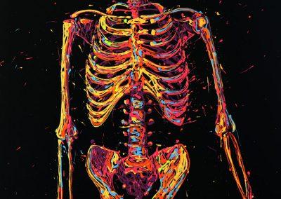 arnaudflow-squelette-92-x-65-cm